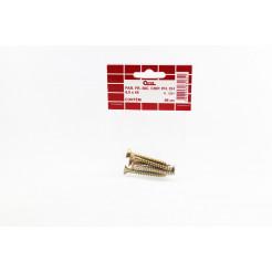 Cartela de Parafuso Chip 6,0x45 6un Cofix
