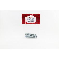 Cartela de Parafuso Madeira 4,2x50 10un Cofix