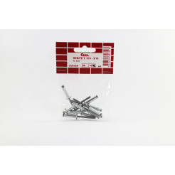 Cartela de Rebite 519 10un Cofix